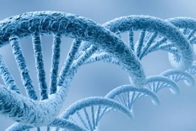 genética psoríase